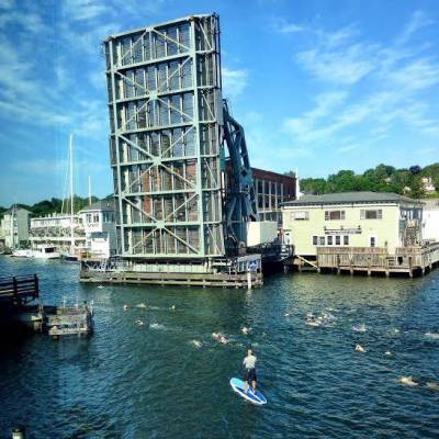 The Mystic Drawbridge and Sharkfest swimmers